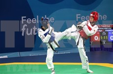 RoK supports Vietnam in developing Taekwondo