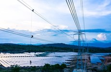 Trung Nam Group inaugurates 12-trillion-VND solar power project