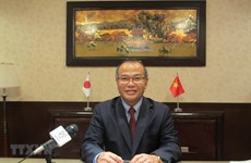 Vietnam-Japan ties a model of win-win partnership: Diplomat