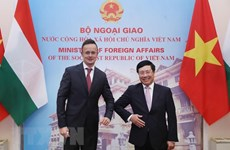 Deputy PM, FM highlights Vietnam-Hungary traditional friendship