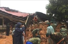 Bodies of 14 Quang Tri landslide victims found