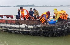 Tay Ninh releases fish fry into reservoir to regenerate fishery resources