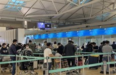 Nearly 450 Vietnamese citizens flown home from RoK