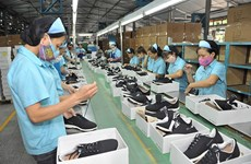 Leather and footwear on course for strong recovery: LEFASO