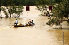RoK provides 300,000 USD for Vietnamese flood-hit people