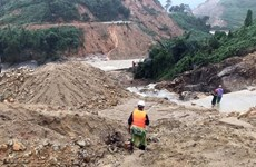 Vietnam's coastline needs new resilience development strategy: WB report