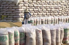 Close to 12 mln USD allocated to refill national rice stockpile