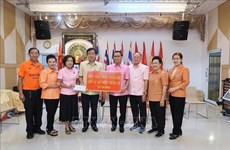 Vietnamese in Thailand, Czech Republic support homeland flood victims