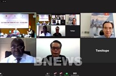 Vietnam, Nigeria hold B2B Networking Webinar on Fashion Products