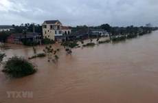Vietnam thanks international organisations for disaster relief