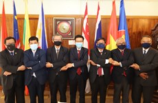 ASEAN Ambassadors to South Africa hail Vietnam's preparation for 37th ASEAN Summit