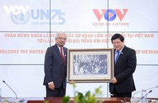UN officials hold working session with VOV leaders