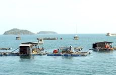 Vietnam seeks sustainable development of fisheries