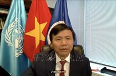 Vietnam highlights role of international law in maintaining peace, security
