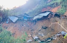 Another Quang Nam landslide kills three, leave eight missing