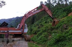 Quang Nam: 21 survive landslides in Nam Tra My