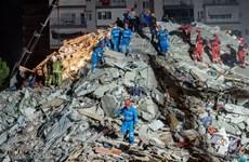 No Vietnamese casualties reported in quake in Turkey, Greece