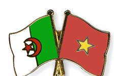 Vietnamese leaders extend congratulations to Algeria on Revolution Day