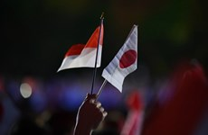 Japan, Indonesia intensify defence cooperation