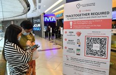 Singapore spends over 10 mln USD on developing digital contact tracing tools