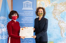 Ambassador pledges utmost efforts to contribute to Vietnam-UNESCO ties