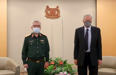 Vietnam, Singapore convene 11th defence policy dialogue