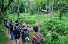 Cambodia earns over 25 million USD from ecotourism in nine months