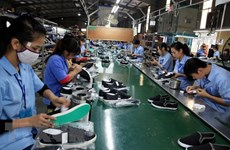 Leather, footwear exports predicted to recover in Q4