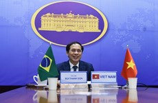 7th Vietnam – Brazil political consultation held