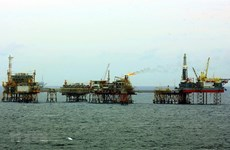 PetroVietnam fulfils 10-month exploitation plan