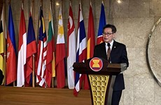 ASEAN Secretary-General pins high hopes for 37th Summit outcomes