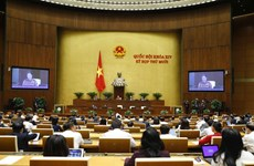 Parliament continues Q&A activities on November 9
