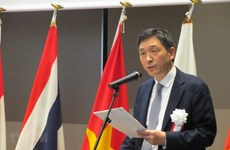 RoK official praises Vietnam's role in ASEAN