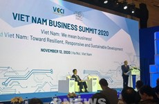 Business Summit highlights significance of digitalisation amidst pandemic