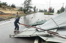 Storm Vamco wreaks havoc in central localities