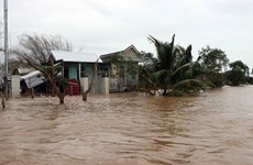 Disasters may cost Vietnam 1.5 pct of GDP annually