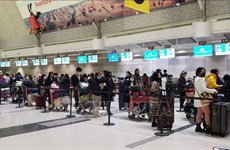 Flight brings home nearly 350 Vietnamese citizens from Canada