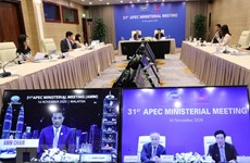 Vietnam attends 31st APEC Ministerial Meeting