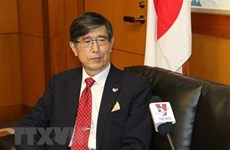 Japanese ambassador to ASEAN speaks of Vietnam's excellent role
