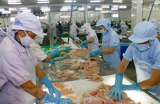 Vietnam needs seafood solutions