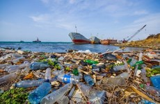 Tripartite agreement signed to cut marine plastic waste in Quang Binh
