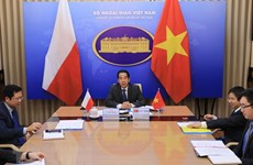 Vietnam, Poland hold online deputy ministerial-level political consultation