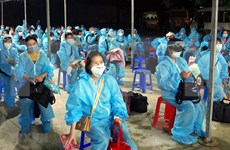 Nearly 280 Vietnamese citizens repatriated from Europe