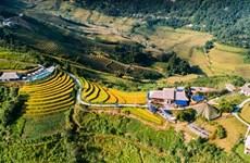 Vietnam Mountain Marathon to kick off at weekend