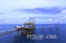 PetroVietnam remains in Vietnam's top 3 largest firms for 10th consecutive year