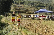 Domestic runners triumph at Vietnam Mountain Marathon 2020