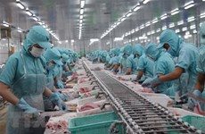 Tra fish export value expected to hit 1.5 billion USD this year