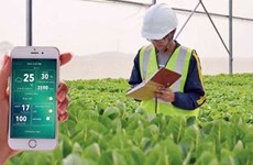 Vietnam promoting hi-tech farming