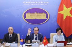 ASEAN cooperation in 2020 lays foundation for next stage: Vietnamese diplomat