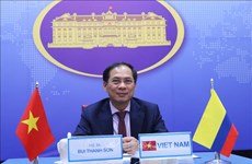Conference seeks to further promote Vietnam-Japan cooperation